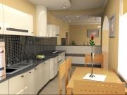 Gemütliche einzeilige Küche mit Esstisch