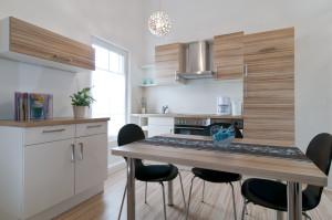 moderne Singleküche mit offenen Wohnraum